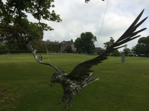 Hawk lawn art at Ballymaloe House, Co. Cork